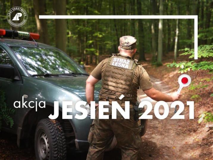"""Tysiące strażników leśnych rozpocznie patrole. Rozpoczyna się akcja o kryptonimie """" Akcja Jesień 2021"""" - Zdjęcie główne"""
