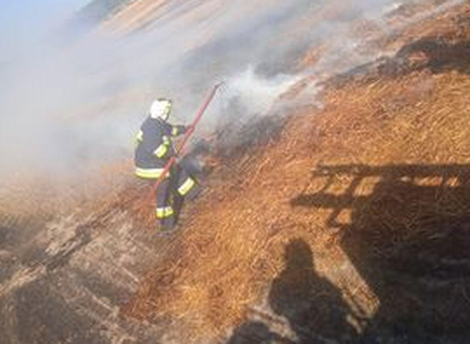 Pożar w Grodzisku. Na miejscu kilka jednostek straży pożarnej [ZDJĘCIA] - Zdjęcie główne