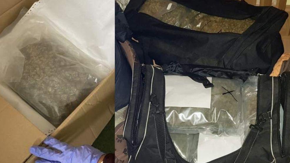 Trzy osoby zatrzymane przez policje. Zabezpieczono ponad 11 kilogramów narkotyków - Zdjęcie główne
