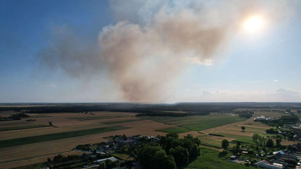 Seria pożarów zboża w powiecie śremskim. Straty mogą być ogromne - Zdjęcie główne