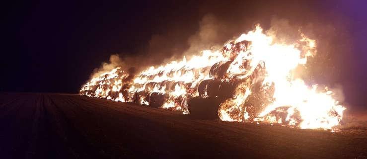 Ogromny pożar słomy w stogach. Kilkanaście jednostek w akcji - Zdjęcie główne