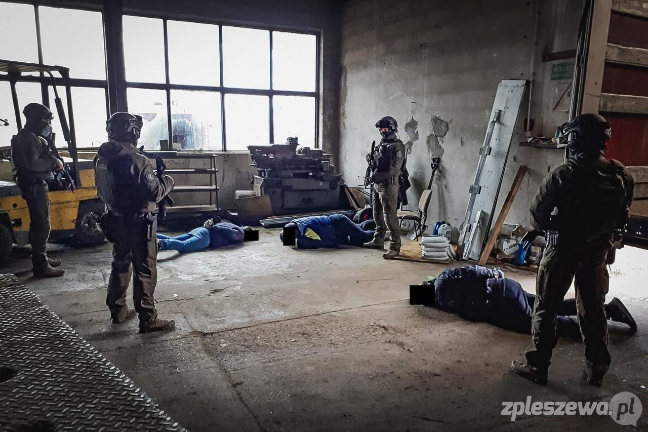 Policja zlikwidowała wielką plantację konopi w Wielkopolsce. Zatrzymano siedem osób  - Zdjęcie główne