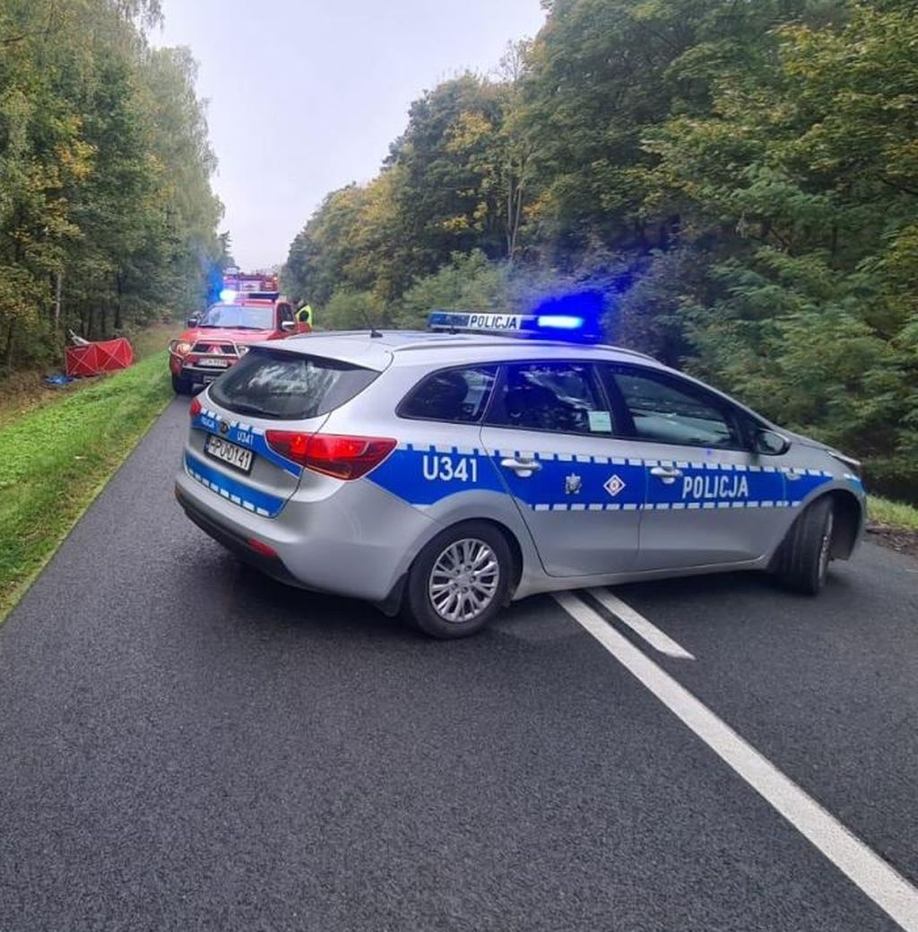 Tragiczny wypadek na trasie Chodzież - Margonin - Zdjęcie główne
