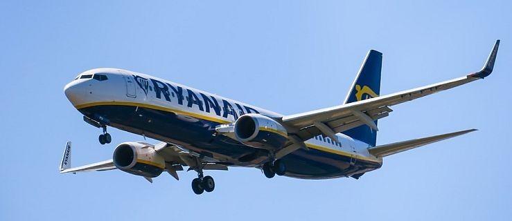 Awaryjne lądowanie samolotu na poznańskiej Ławicy  - Zdjęcie główne