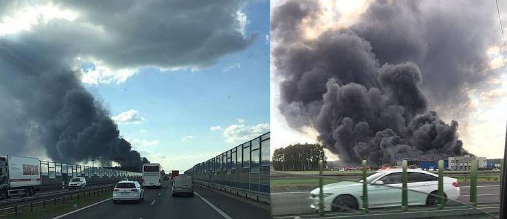 Ogromny pożar pod Poznaniem. Spłonęła hala stoczniowa - Zdjęcie główne