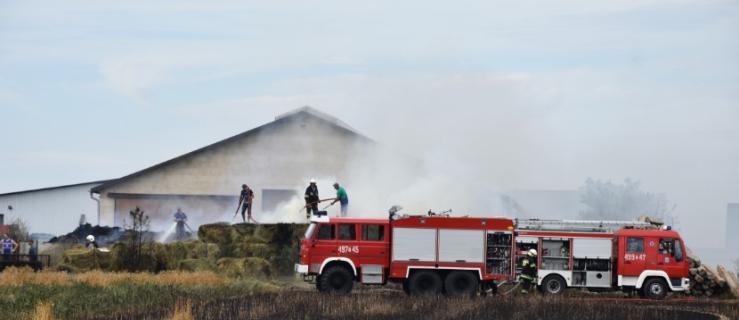Pojechali do pożaru. Mimo bohaterskiej reakcji zaliczyli wpadkę - Zdjęcie główne