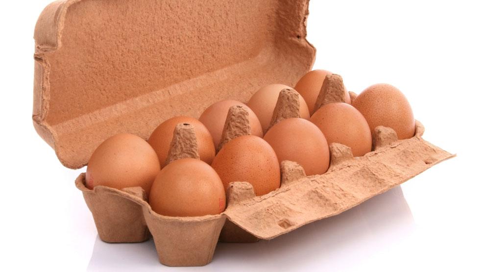 """WAŻNE! Bakterie salmonelii w Biedronce. Nie kupujcie jaj w opakowaniu """"Jaja świeże L Moja Kurka"""" - Zdjęcie główne"""