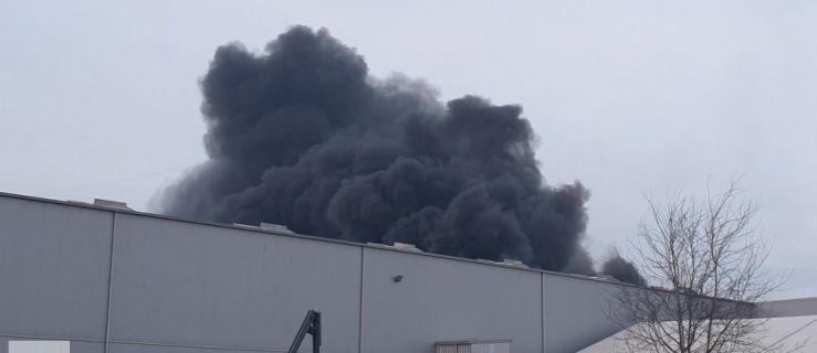 Płonęła hala produkująca meble. Ewakuowano 750 osób  - Zdjęcie główne